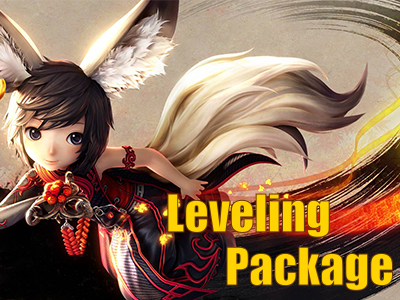 Blade And Soul Leveling Package